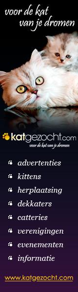 katgezocht.com